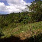 Aker's Land