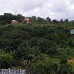 Argyle Property