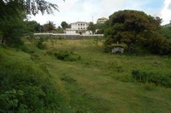 Brighton Land