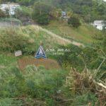 Dorsetshire Hill