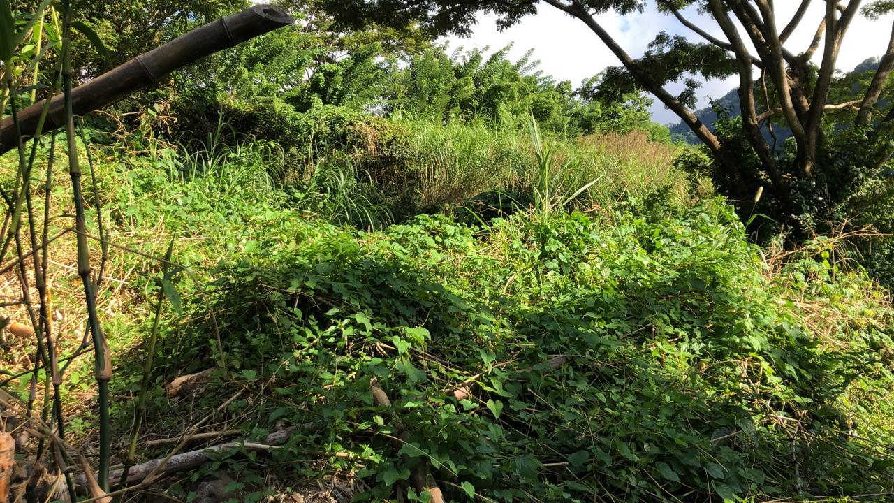 Queensbury Land – QBL1